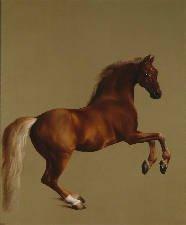 Whistlejacket, George Stubbs, 1762, huile sur toile, Londres, National Gallery.