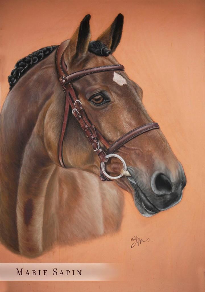 Portrait réalisé par Marie Sapin - Le cavalier bleu