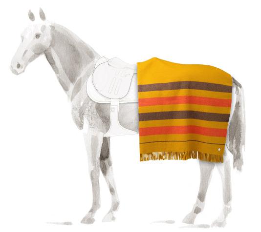 Couverture Rocabar Hermès