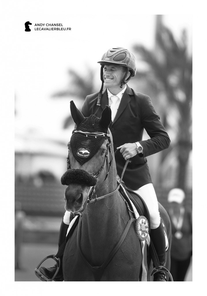 Le cavalier bleu - Olivier Robert
