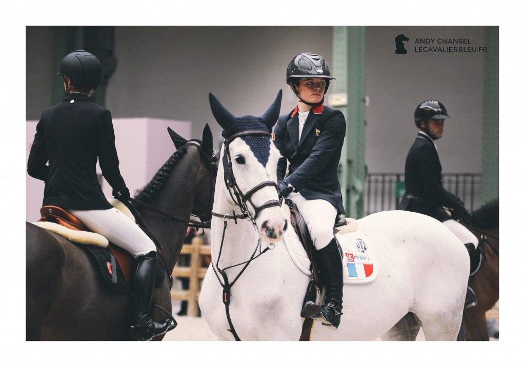 Saut Hermès 2017 - www.Lecavalierbleu.fr
